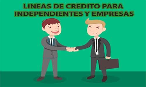 ayudas_independientes_empresas