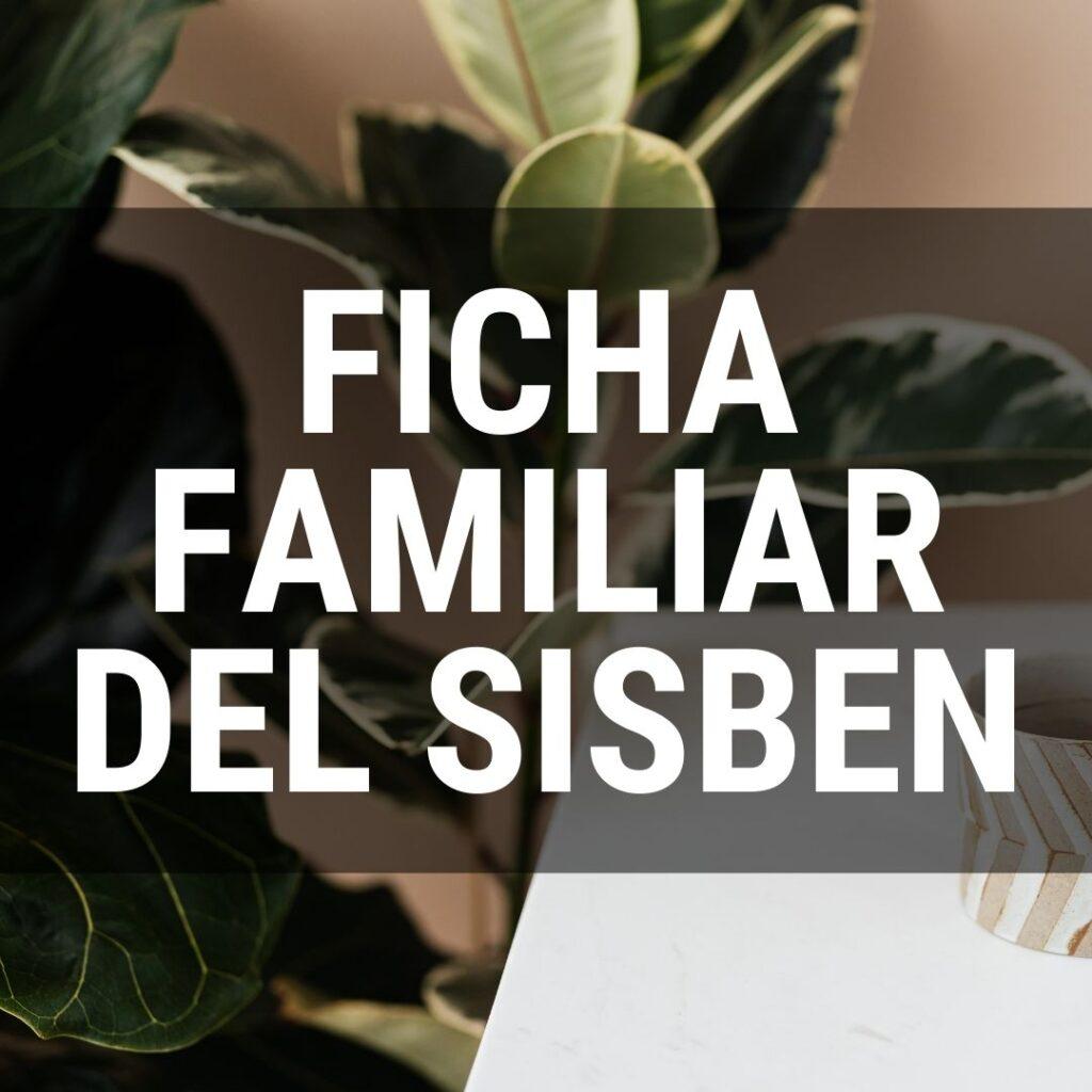 Todo lo que debes saber sobre la ficha familiar del Sisbén